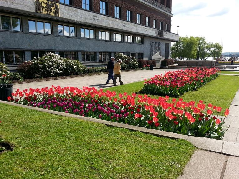 Blomsterløk, Oslo Rådhus