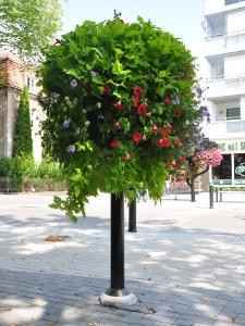 blomstertre_torg_grønn