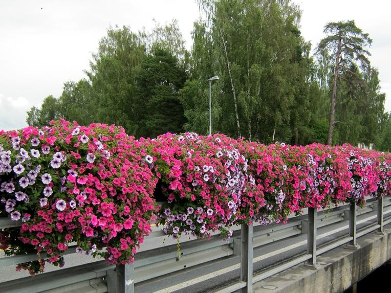 Blomsterkasser med selvvanning for rekkverksmontering fra Plantscape, Hamar