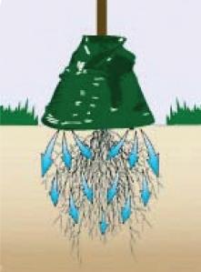 vanningspose_illustrasjon